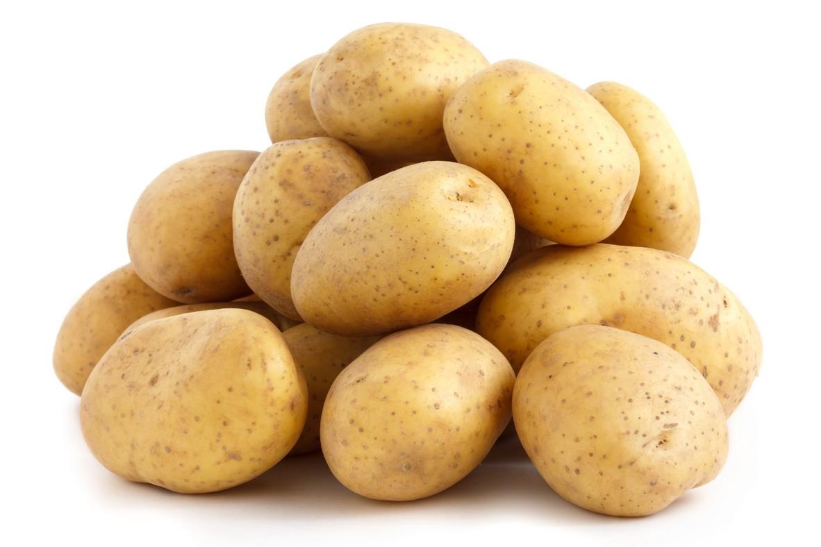 Verhagen Holland – Potatoes and More